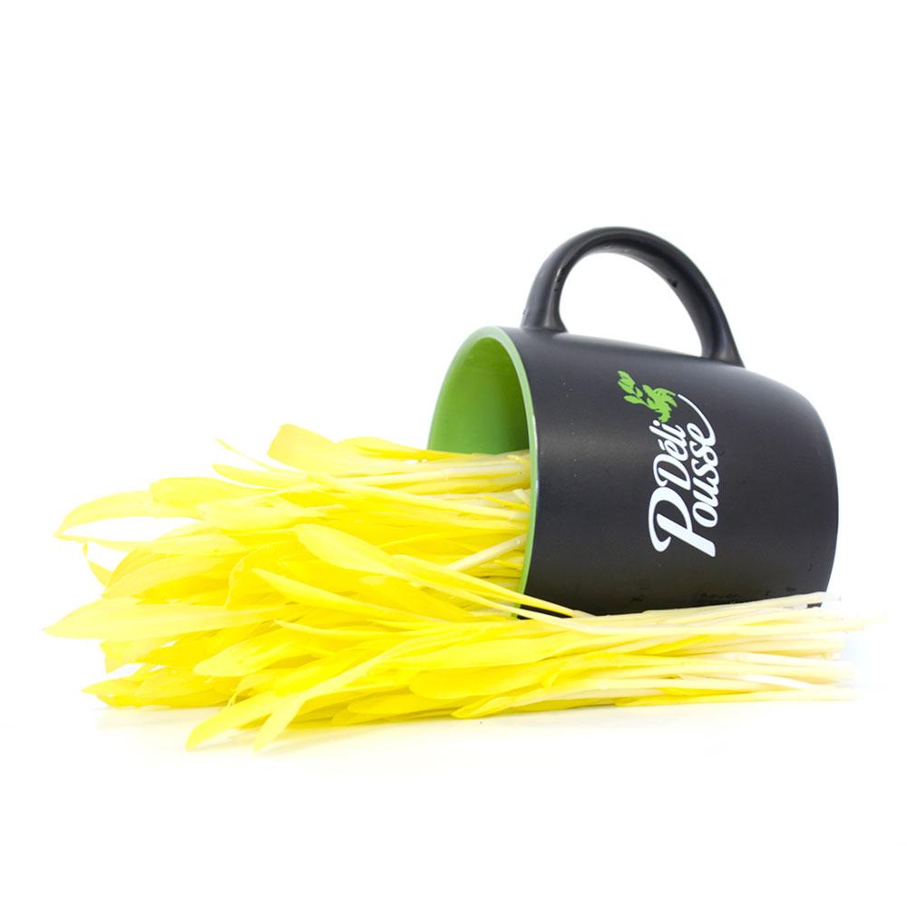pousses-tango-pousses-vegetales-commestibles-mais-jaune