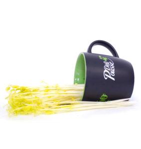 pousses-tango-pousses-vegetales-commestibles-pois-jaunes